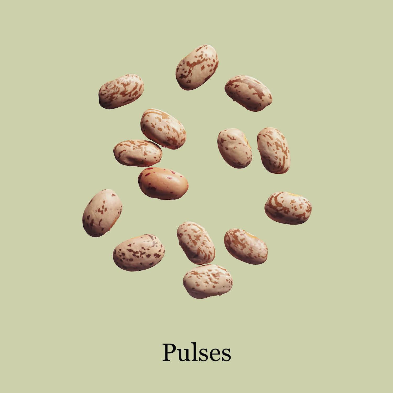 Warenrunde: PULSES