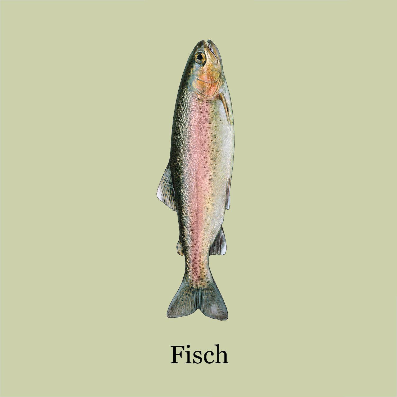 Warenrunde Fisch
